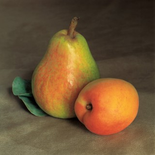 Still-Life-with-Pear-and-Apricot
