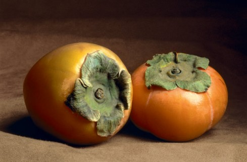 Fruits and Seedpods, Two-Persimmons