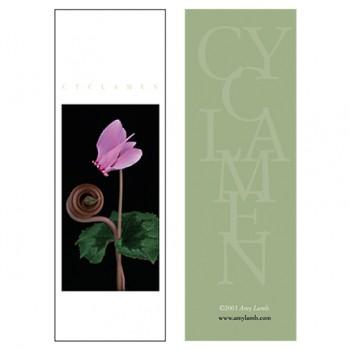 Cyclamen IV