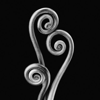 Fiddlehead Fern II